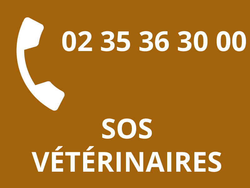 VETERINAIRES